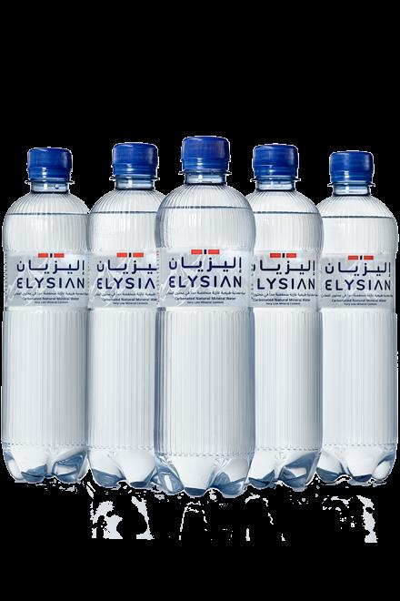 Sparkling Water Carton (24pk)