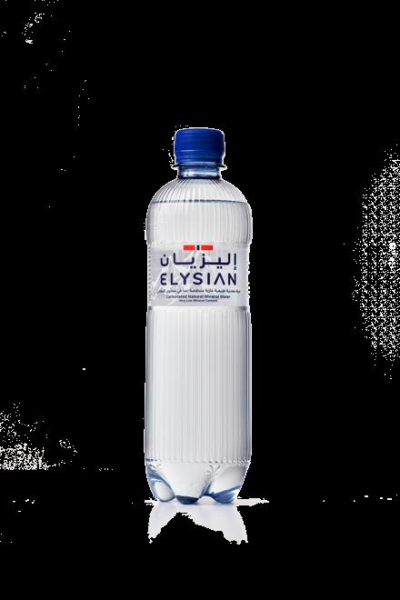 Sparkling Water Bottle